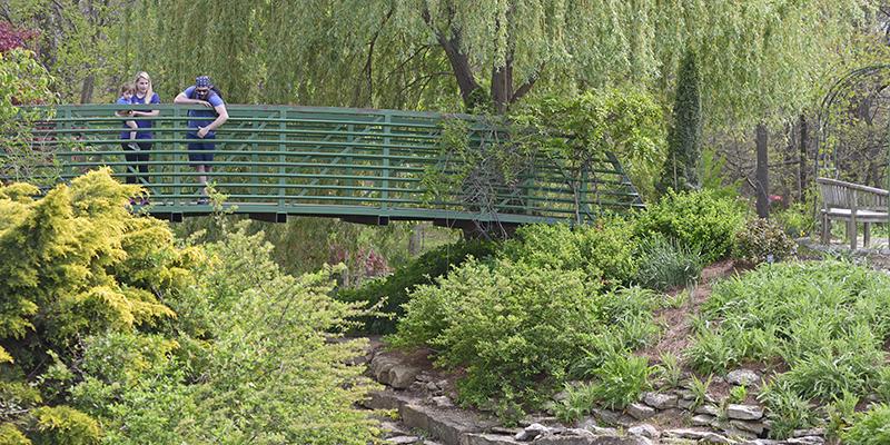 Overland Park Arboretum Bridge