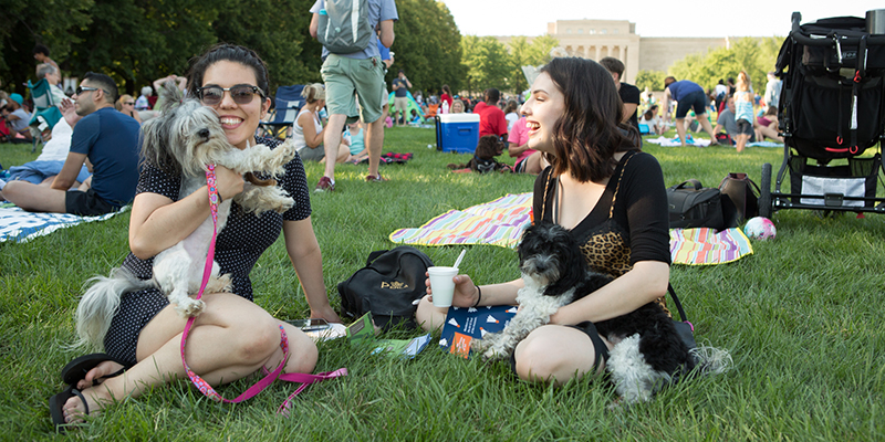 The Nelson-Atkins Museum of Art | Big Picnic