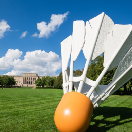 Nelson-Atkins Museum of Contemporary Art